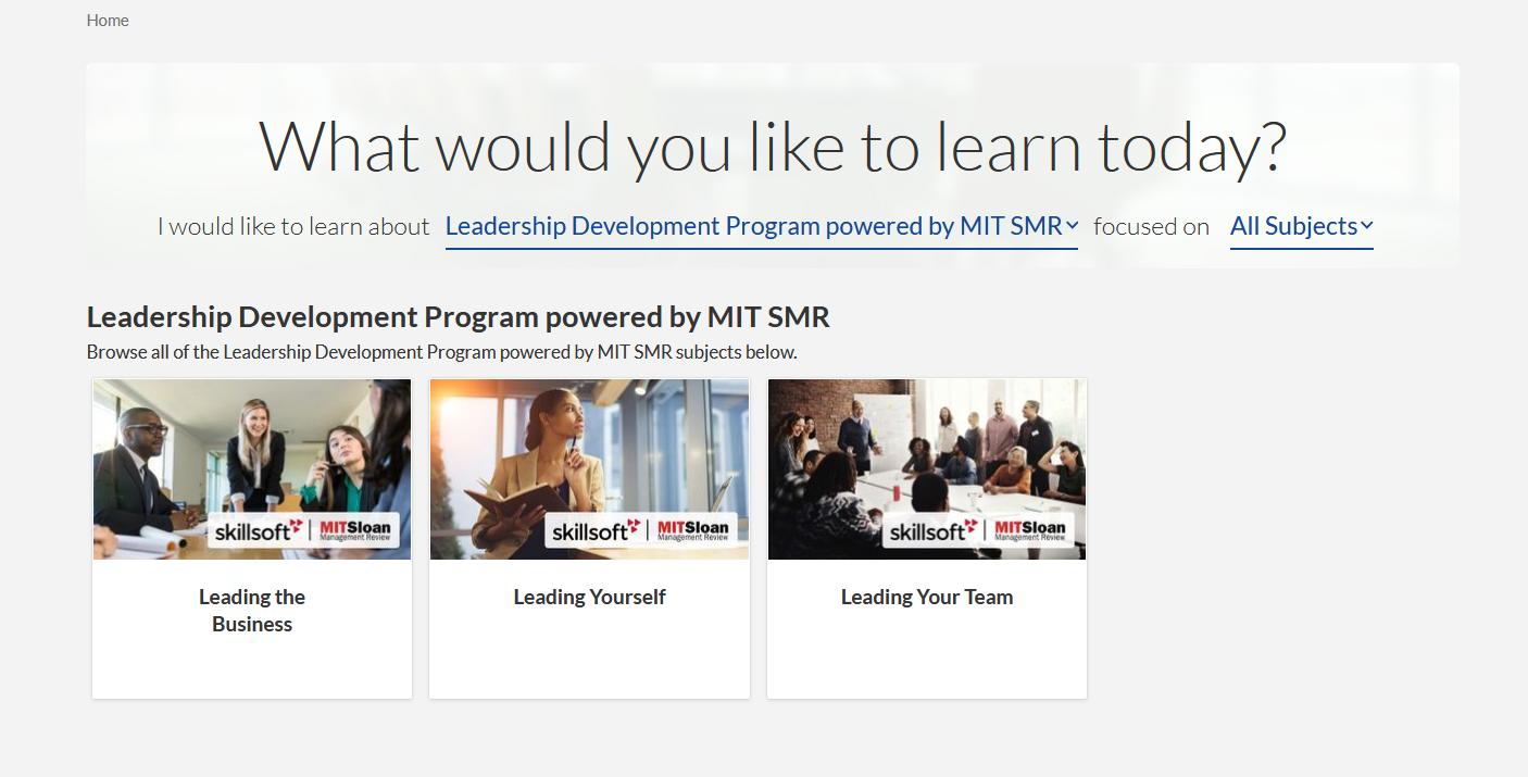 Skillsoft Leadership Development Program